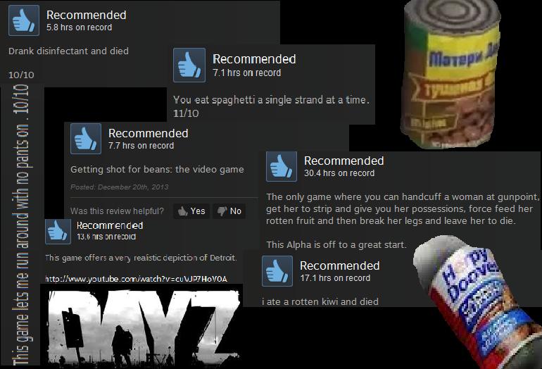 dayzreviews